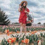 Texas Tulips Farm Boohoo Speechless Dresses Red Polka Dot Ruffle Wrap Dress Lack of Color Straw Hat Ipanema T-Strap Sandals